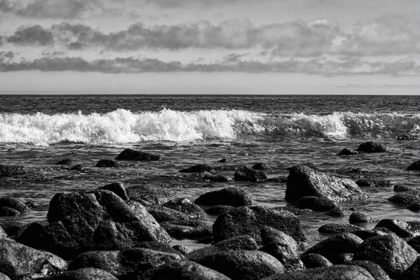 Shoreline  1 blog