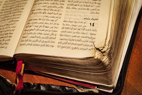 Samar Mohammad 021712 ArabicBible 1c blog