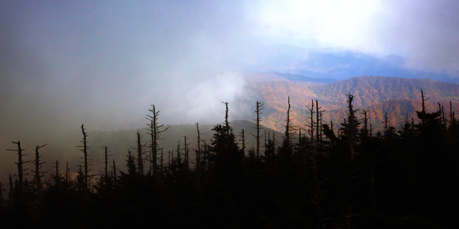 Clingmans Dome NOV 2013 0  1 blog