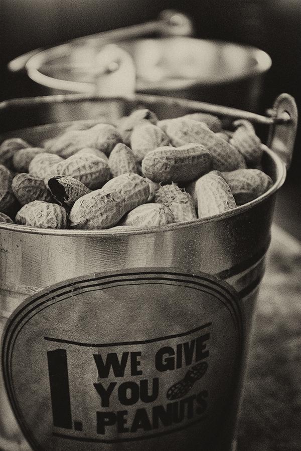 Logans Peanuts 021714 2 antique blog
