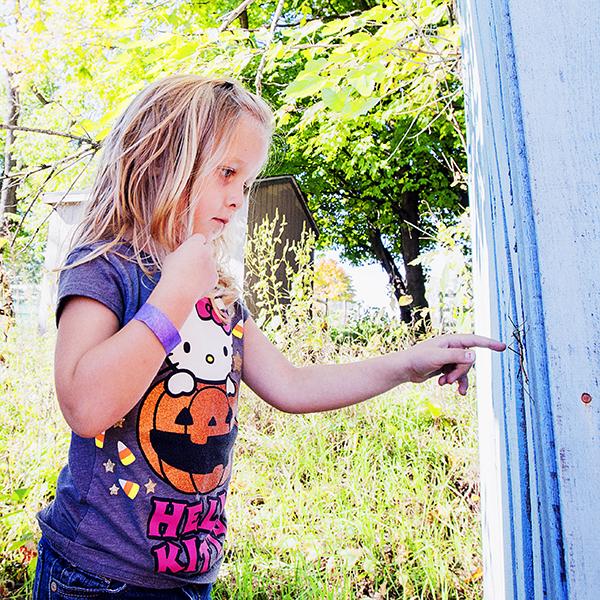 1PumpkinPatch 101114 RUBY 3b blog