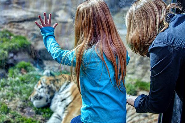 Zoo 041215 Lydia.Linda 3b blog