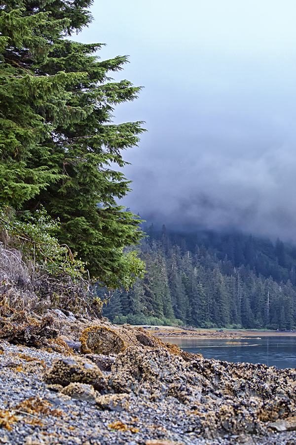 Alaska Shoreline 2016 1 blog