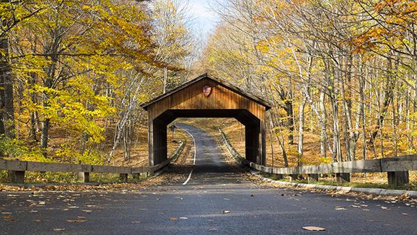 1 PierceStocking Bridge 102814 1blog